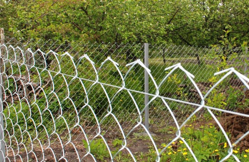 Фото забор из сетки рабицы своими свадебном